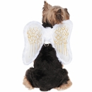 Zack & Zoey Angel Wings Harness Dog Costume - Medium