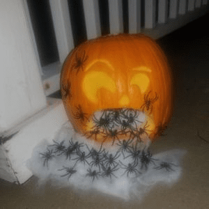 2019 Pumpkin Carving Contest Winners