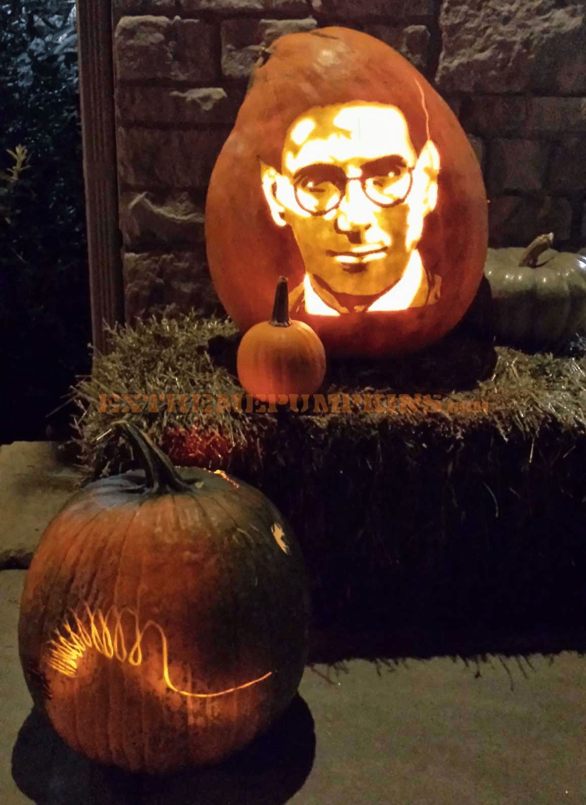 Egon (from Ghost Busters) Pumpkin
