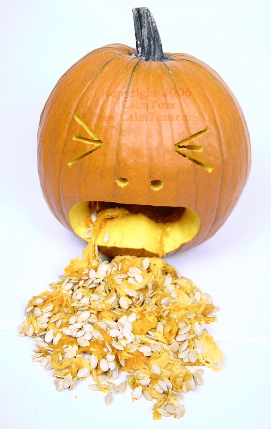 Photo Rights for The Puking Pumpkin and Other Photos