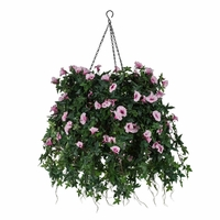 """14"""" Hanging Basket with Artificial Morning Glory Flowers - 5 Colors"""