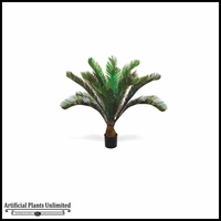 3.5' Potted Cycas Palm