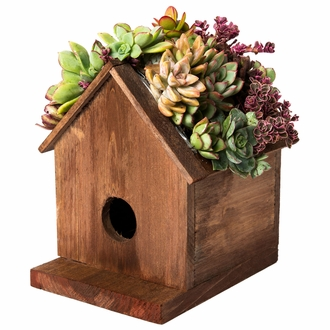 Decorative Birdcages, Birdhouses and Chicken Coops