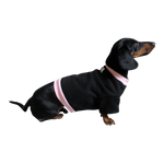 Dachshund Sweatshirt - Black with Pink Rib