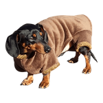 Dachshund Windblock Fleece Bodysuit - Bronze