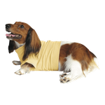 Dachshund Lightweight Shirt - Creamy Yellow