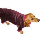 Dachshund Windblock Bodysuit - Dark Grape