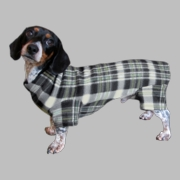 Dachshund Indoor/Outdoor Bodysuit -  Black/Cream/Green Plaid