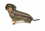 Dachshund Olive Plaid Indoor/Outdoor Bodysuit
