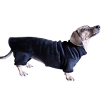 Dachshund Windblock Fleece Bodysuit - Rich Black