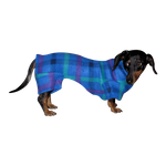 Dachshund Indoor/Outdoor Bodysuit -  Turquoise Plaid