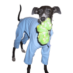 Italian Greyhound Fleece Jammies - Light Blue
