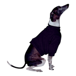 Italian Greyhound Sweatshirt - Black