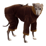Italian Greyhound Bronze Windblock Fleece Bodysuit