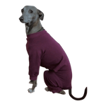Italian Greyhound Romper- Plum