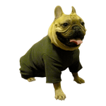 Pug, Boston Terrier & French Bulldog Heavy Fleece Bodysuits