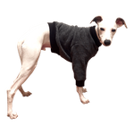 Whippet Heavy Fleece Sweaters