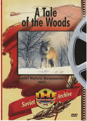 A Tale of the Woods DVD