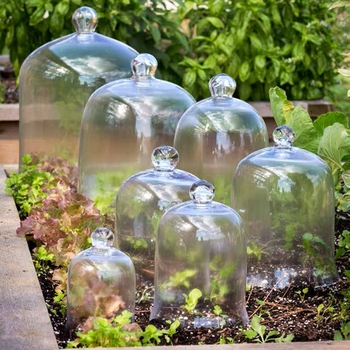 Cloches - Domes
