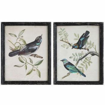 Wood Framed Bird Prints (Set-2)