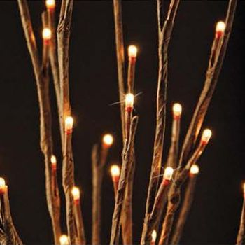 Lighted Willow Branch - 60 Led