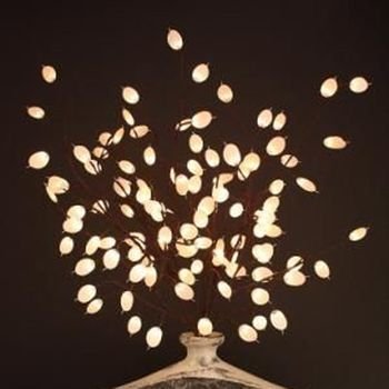 Silver Dollar Light Branches