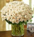100 Premium Long Stem White Roses in a Vase