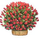 Large Red Rose Basket