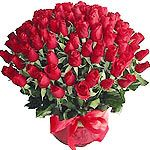100 Stems of Red rose