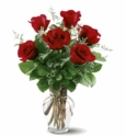 6 Red Roses Just because