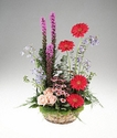 Arrangement of flowers