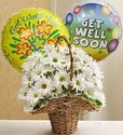 Basket Full of Daisies with Get Well Balloons