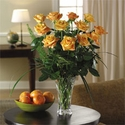 Burst of Orange Dozen Roses