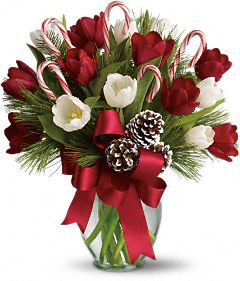 Christmas Flowers >By Golly, It's Jolly Flowers