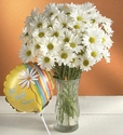 Daisy Bouquet to say Get Well flowers