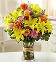 Fields of Europe� Arrangement