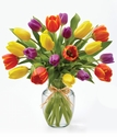 Flowers® Timeless Tulips