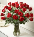 Love And Romance red rose
