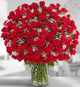Long Stems Red Roses Valentines