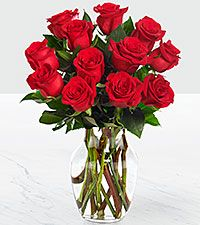 Red 1 dozen long stem rose