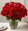 Red Roses 30 Stems