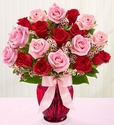 Shades of Pink and Red long stem18 rose