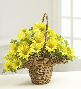 Summer Daisy Basket