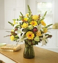 Sympathy Flowers and Gifts