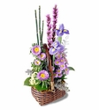 Sympathy Gift Sweet Peace Basket