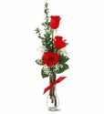 Three red roses arrive in a clear vase