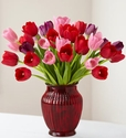 Tulips for Your