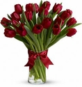 Valentine's Red Tulips