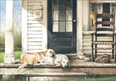 PU421 - Loss of Pet Sympathy Card