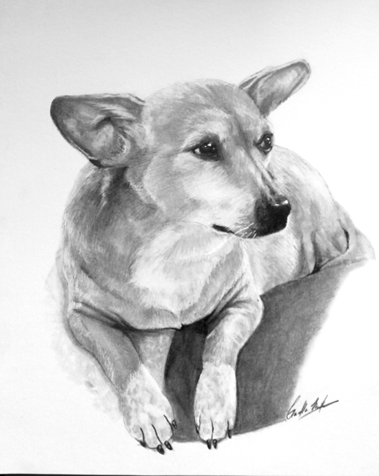 """Dec 1 - Pet Portraits: The """"Purfect"""" Gift with Gaella Materne"""